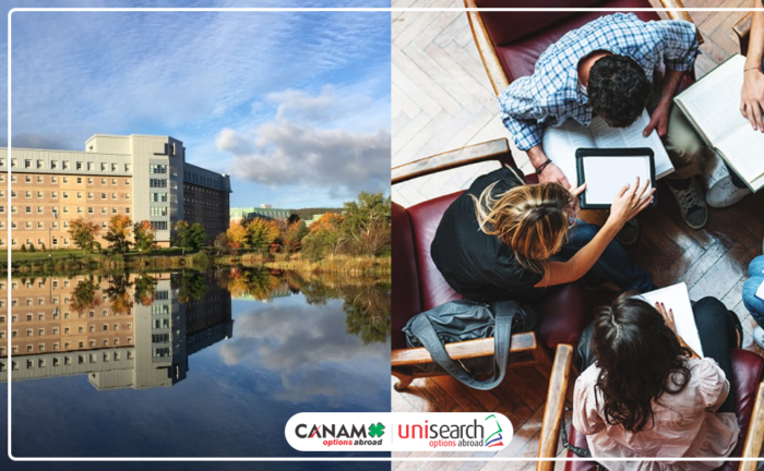 Top Reasons to Study in NewFoundland